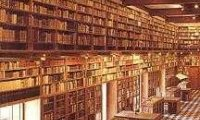 it's raining outside, the perfect time to read